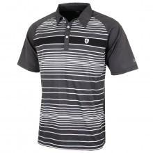 Island Green 2016 Mens Engineered Stripe Golf Polo Shirt
